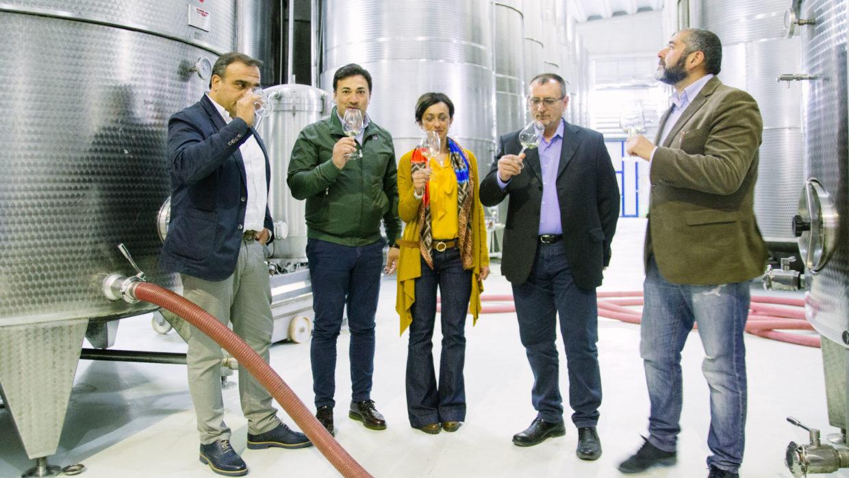Nasce Lazzarella, la nuova Falanghina di Vigne Sannite
